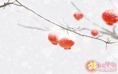描写元宵节的古诗大全 元宵节古诗名句