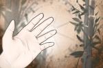 手指斗簸箕看命运 手指命运算命