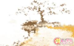 花朝节出生的女孩命 命运好不好呢