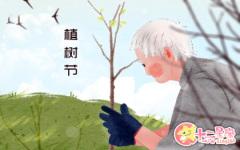 关于植树节的画 植树节的由来