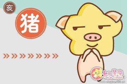 属猪的发财年龄段 83年的猪36岁后命好