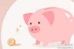 女人梦见很多小猪崽是什么意思