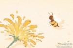 女人梦见自己被马蜂蛰是什么意思