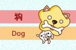 属狗和属狗的适合做夫妻吗 在一起合适吗