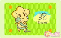 属蛇的人恋爱中的臭毛病 说得就是你