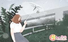 谷雨朋友圈文案 谷雨节的有趣创意文案