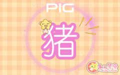 83年猪一生有二婚 属猪人的命运