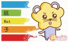 鼠年男宝宝取名大全2020款 鼠宝宝取名