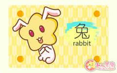 75年属兔多少岁寿终 属兔寿命