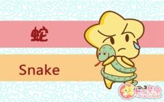 属蛇牵挂你时有什么表现 有什么说法