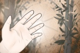 如何从手指缝隙大小看人性格特征 有什么说法