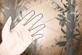 指纹算命 中指看一个人的命运