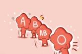 血型配对 AB型血男和B型血女配吗