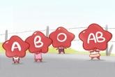 血型配对 AB型血男和O型血女配吗
