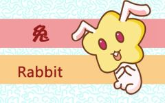 属兔在喜欢的人面前表现 属兔爱你的表现