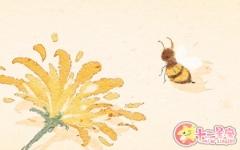 孕妇梦见蜜蜂是什么意思 有什么预兆