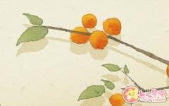 孕妇梦见桔子是什么意思 有什么预兆吗