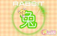 属兔人出生于几月好 属兔几月命运好