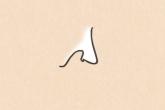 鼻子看相图解 这五种鼻子是成功人士