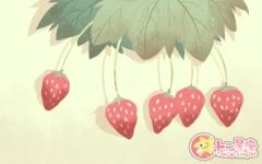 梦见吃草莓是什么意思 有什么寓意
