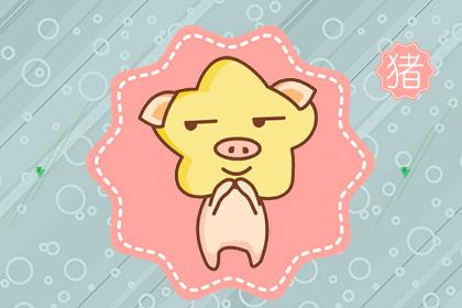 属猪的性格 属猪一生运势分析