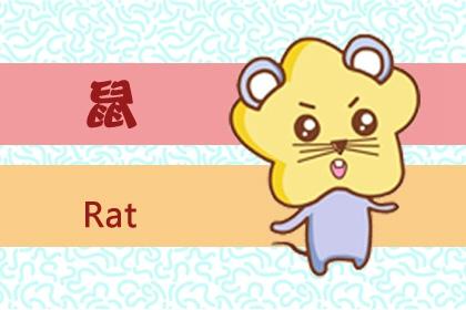 属鼠人适合做什么行业 属鼠做什么行业最好