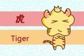 属虎的几点出生有福气 有什么说法