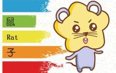 属鼠的人谈恋爱是相信缘分还是感动