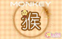 生肖猴运程 2020年8月属猴运势