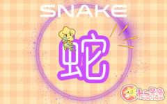 生肖蛇运程 2020年8月属蛇运势