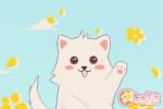 梦见猫咬手是什么意思 有什么征兆