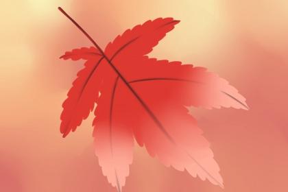 关于立秋的古诗大全 最经典的立秋古诗词