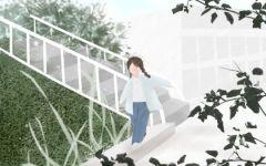 女人梦见上楼梯预示什么 有什么含义