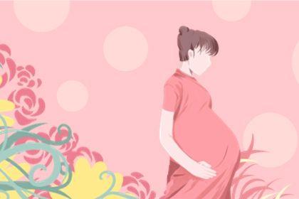2021年清宫图表最准确版 2021年怀孕清宫图