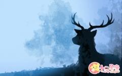梦到鹿是什么意思 有什么寓意吗