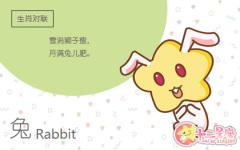 属兔的人在新的一段感情中会和前任藕断丝连吗