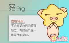 生肖猪运程 2020年9月属猪运势