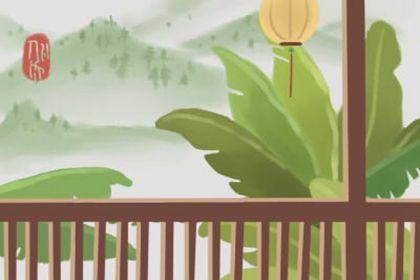 家庭院子绿植养不活风水差是真的吗