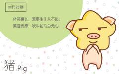 属猪的人的第几任恋人是最幸福的