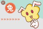 生肖冲日查询 2020年11月2日