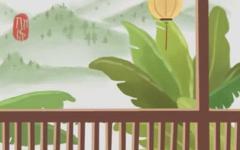 阳台养什么花风水好 植物风水