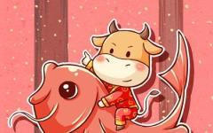 属牛人在本命年可以结婚吗 2021本命年结婚的吉日