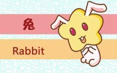 今年属兔子的多少岁了 兔子在牛年的运气咋样