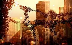 商贸公司起名 高端大气的公司名字推荐