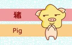 2021年生肖猪的贵人和小人分别是谁