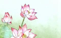 最能招财旺财的植物有哪些 旺运旺财的风水植物