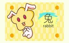 龙跟兔为什么不和 龙兔结婚会怎样
