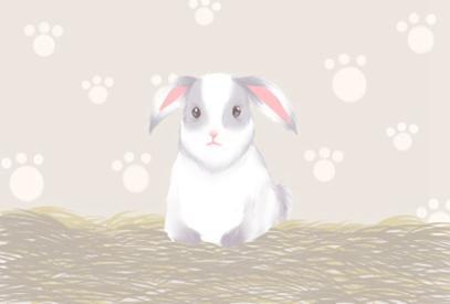兔的贵人是哪个生肖 属兔人的五大贵人属相