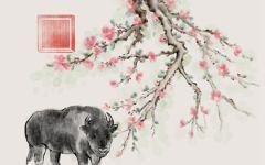 61年属牛最佳婚配 配哪个属相最好