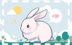2021年8月份属兔财运解析 财运旺盛业绩上涨